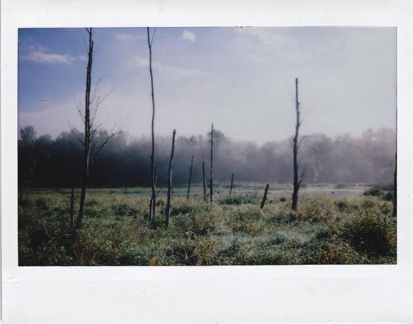 Instax sample photo